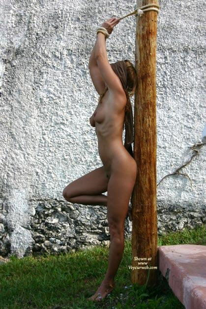 amazing tits amateur pornstar